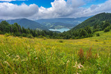 Scenic landscape wide-angle view from the height on Zaovine lake in Serbia at summer day - 232769969