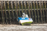 Bateau de pêche dans un port à marée basse - 232774746