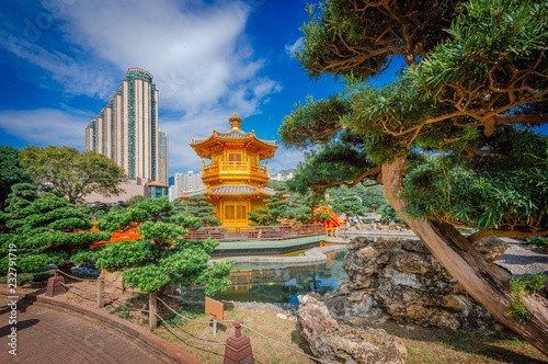fototapeta na ścianę The Golden pavilion and gold bridge in Nan Lian Garden near Chi Lin Nunnery, famous landmark in Hong Kong.