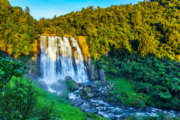 Exotic journey to Marokopa falls