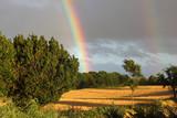 Double rainbow in the evening sky - 232813110