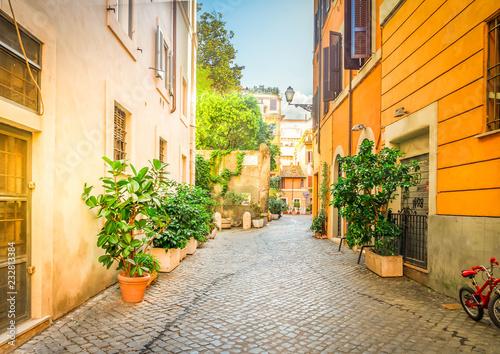 typowa wąska włoska ulica w Trastevere z zielonymi roślinami i kamiennym brukiem, Rzym, Włochy, retro stonowany