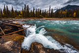 Athabasca Falls along the Icefield Parkway in Jasper National Park, Alberta, Canada