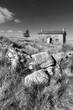 Stunning toned black and white landscape image of Nun's Cross Farm in Dartmoor