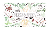 Set of hand drawn spices, herbs, vegetables, fruits and lettering on white background. Horizontal color vector illustration. - 232844753
