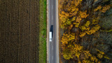 Aerial view of road in autumn forest at sunset. Amazing landscape with rural road, trees with red and orange leaves in a day near the corn field.