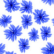 Seamless floral pattern. Stylized cornflowers and meadow grasses on dark blue. Hand drawn vector illustration - 232862309
