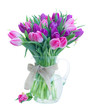 Pink and violet fresh tulip flowers in glass vase isolated on white background