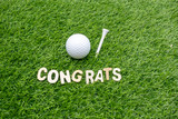 Congratulations to golfer with golf ball and tee on green grass