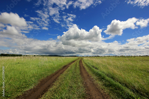 Foto Murales summer landscape with road in the field against the horizon with blue sky and clouds