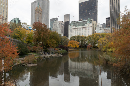 Foto Murales Central Park in New York City autumn foliage