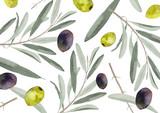 オリーブの葉と果実 水彩画背景