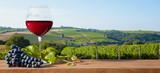 Verre de vin rouge sur paysage de vigne - 232917162