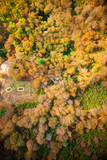 Autumn seen from above