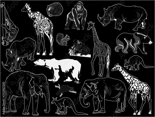 collection of seventeen isolated on black grey animals