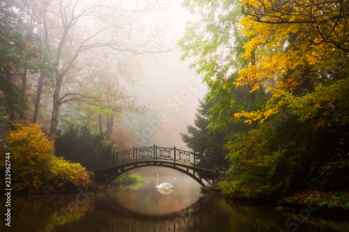 mata magnetyczna Scenic view of misty autumn landscape with beautiful old bridge in the garden with red maple foliage.