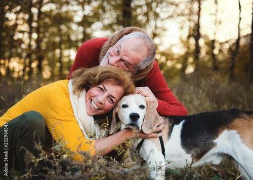 Leinwanddruck Bild A senior couple with a dog in an autumn nature at sunset.