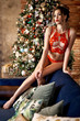Leinwandbild Motiv Beautiful brunette sexy Santa Clause in elegant panties and bra
