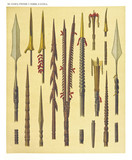 Ancient detailed ethnic collection of african decorated spears and spades, coast of Dutch New Guinea, isolated elements. By F.S.A. De Clercq and J.D.E. Schmeltz Leiden 1893 New Guinea - 232973327