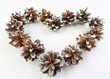 The heart is lined with pine cones on a white background.