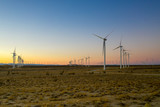 wind turbines in field at sunset - 233012794