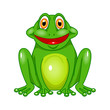 vector green frog on white background