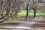Park alley in autumn - 233020509