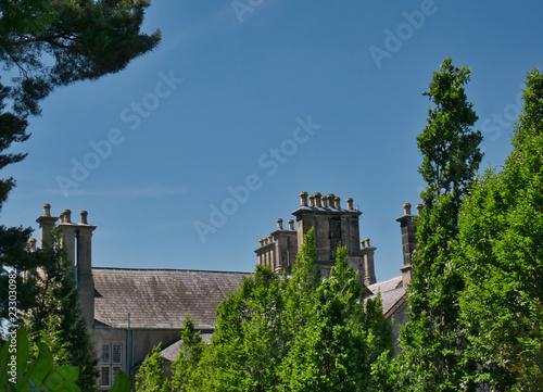 Leinwanddruck Bild Bäume vor einem Haus mit mehreren Schornsteinen