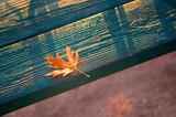 Beautiful autumn sunrise. Sunrise. Autumn sunrise Early morning beautiful autumn. - 233051758