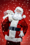 santa claus with gift - 233061561