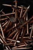Kupfernägel im Detail - 233123199