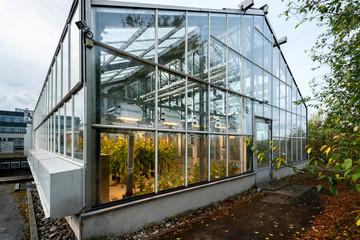 Forschung von Pflanzen und Schädlingen, Anzucht im klimatisierten Gewächshaus mit Kammern