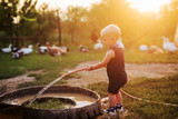 Cute little boy filing pots with water for the chickens on his grandparents animal farm. - 233151153