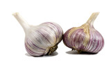 Two heads of pink garlic with dry roots on isolated white background - 233182957