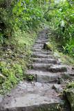 Hiking Steps - 233213192
