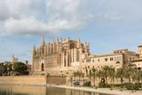 Gotische Kathedrale von Palma, im Vordergrund ein Palmenpark - 233225153