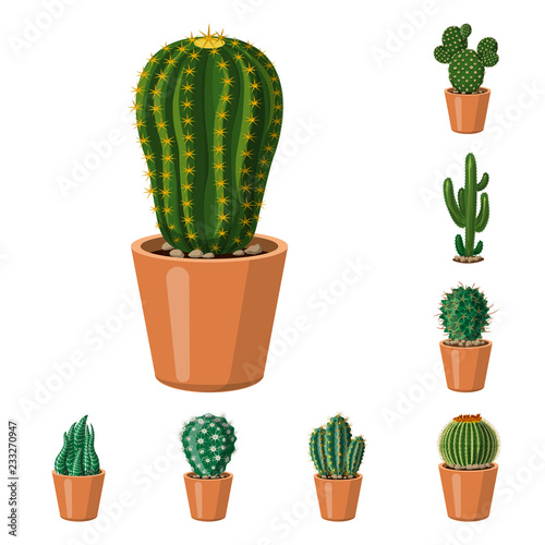 Poster Isolated object of cactus and pot symbol. Collection of cactus and cacti stock symbol for web.