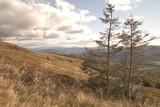 Jeseiń w Bieszczadach - widok ze szlaku na Tarnicę
