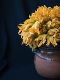 flor de calabaza en jarro de barro - 233296910