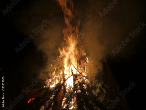 Offenes Feuer mit brennendem Tannenbaum - 233322900