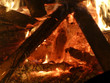 Offenes Feuer mit brennendem Tannenbaum - 233324563