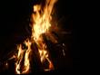 Offenes Feuer mit brennendem Tannenbaum - 233325799