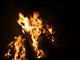 Offenes Feuer mit brennendem Tannenbaum