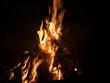 Leinwandbild Motiv Offenes Feuer mit brennendem Tannenbaum
