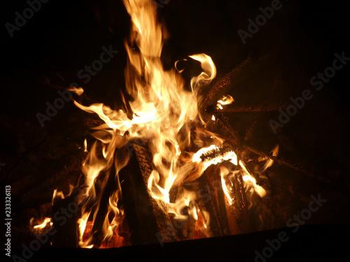 Offenes Feuer mit brennendem Tannenbaum - 233326113