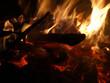 Offenes Feuer mit brennendem Tannenbaum - 233327302