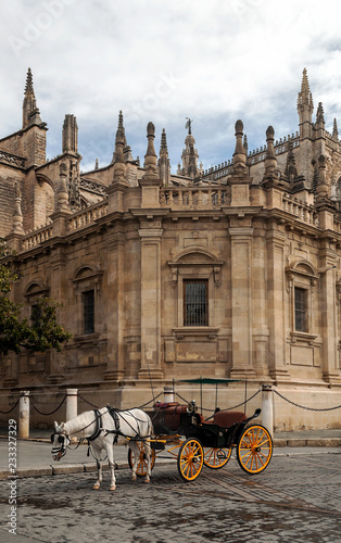 Horse carriage in front of the Giralda in Seville