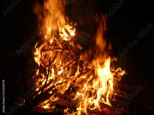 Offenes Feuer mit brennendem Tannenbaum - 233328778