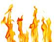 Quadro sparks of four yellow bright flames on white