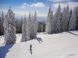 Winter ski resort - 233397150